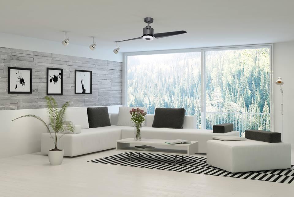 Ceiling Fans (2)