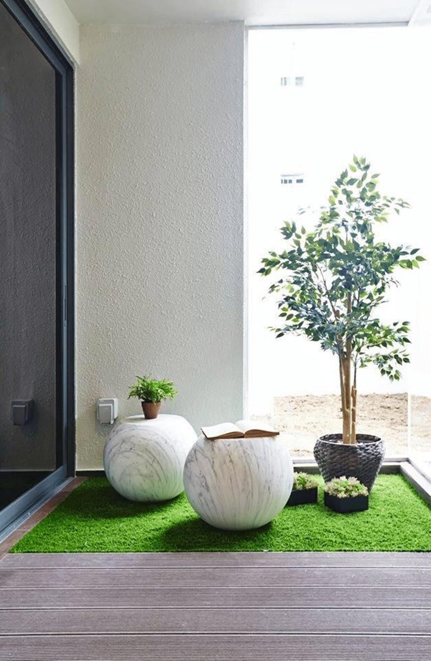 Indoor garden (5)