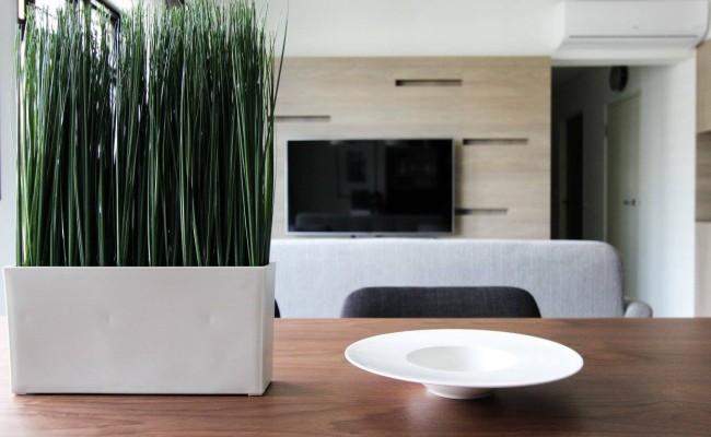 Modern Interior Design (20)