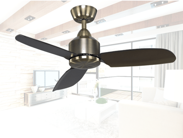 Exceptionally beautiful fans for your home