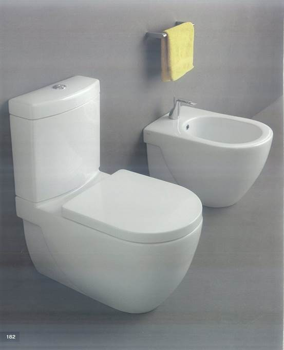 Unleash the full beauty of your bathroom with these Water Closet (2)