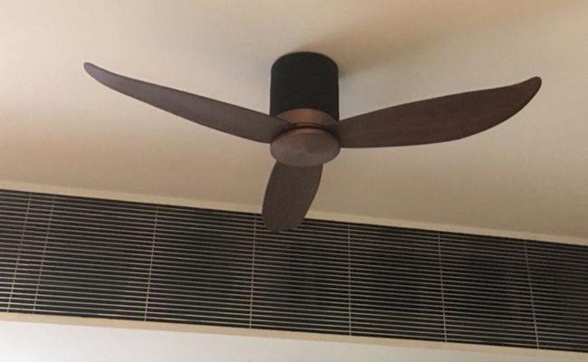 PO Eco Fan (3)