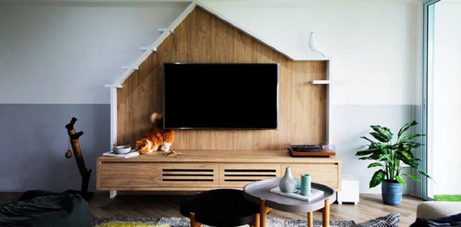 So You Are A Cat Lover & You Want To Build A Cat-Friendly Home