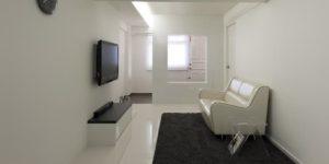 Minimalist Monochromatic Interior Design