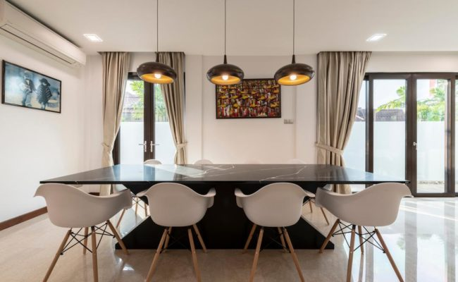 Sophisticated Modern Home (5)